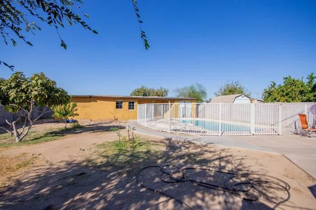 1826 E Grovers Avenue, Phoenix, AZ 85022 (MLS #6149798) :: Sheli Stoddart Team | M.A.Z. Realty Professionals