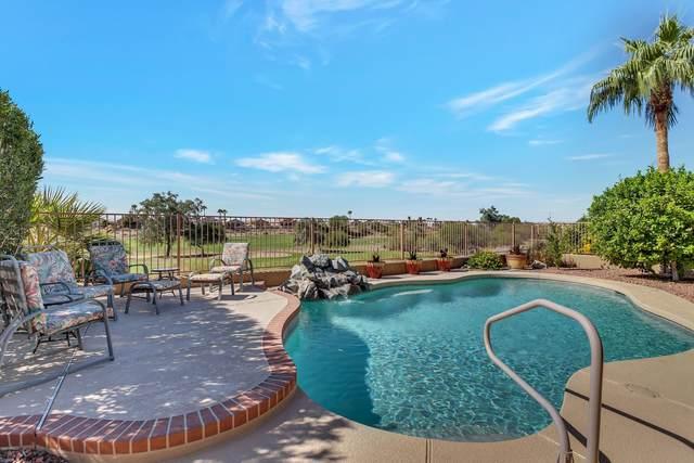 11559 W Cottontail Court, Surprise, AZ 85378 (MLS #6149807) :: REMAX Professionals
