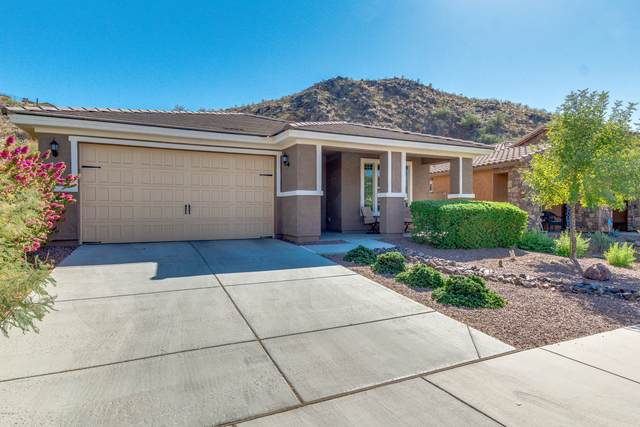 27213 N Skipping Rock Road, Peoria, AZ 85383 (MLS #6150004) :: Power Realty Group Model Home Center