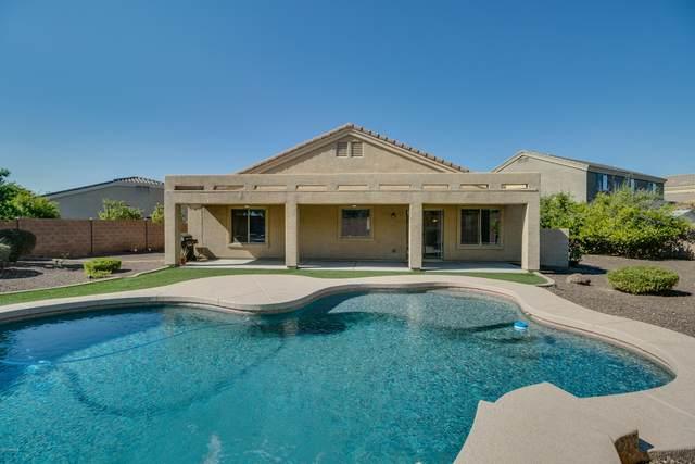2456 E Creedance Boulevard, Phoenix, AZ 85024 (MLS #6150450) :: The Carin Nguyen Team