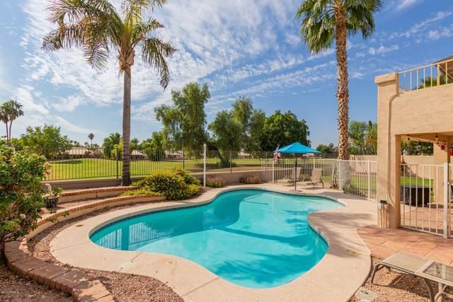 6241 W Monona Drive, Glendale, AZ 85308 (MLS #6150453) :: Brett Tanner Home Selling Team