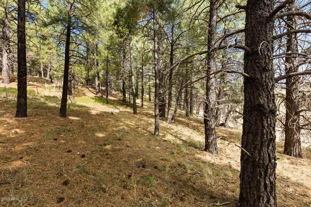 4601 S Lake Mary Road, Flagstaff, AZ 86005 (MLS #6150718) :: Yost Realty Group at RE/MAX Casa Grande
