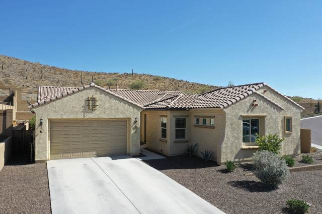 27405 N 16TH Avenue, Phoenix, AZ 85085 (MLS #6150944) :: Sheli Stoddart Team | M.A.Z. Realty Professionals