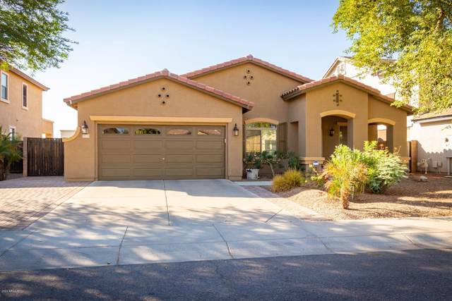 13771 W Earll Drive, Avondale, AZ 85392 (MLS #6151041) :: RE/MAX Desert Showcase