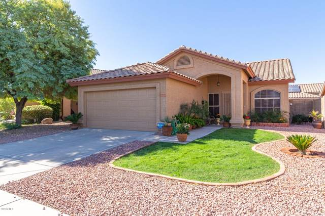 17132 N Woodrose Avenue, Surprise, AZ 85374 (MLS #6151086) :: The Riddle Group