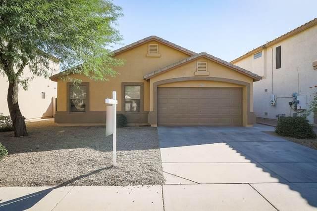 12833 W Roanoke Avenue, Avondale, AZ 85392 (MLS #6151151) :: Sheli Stoddart Team | M.A.Z. Realty Professionals