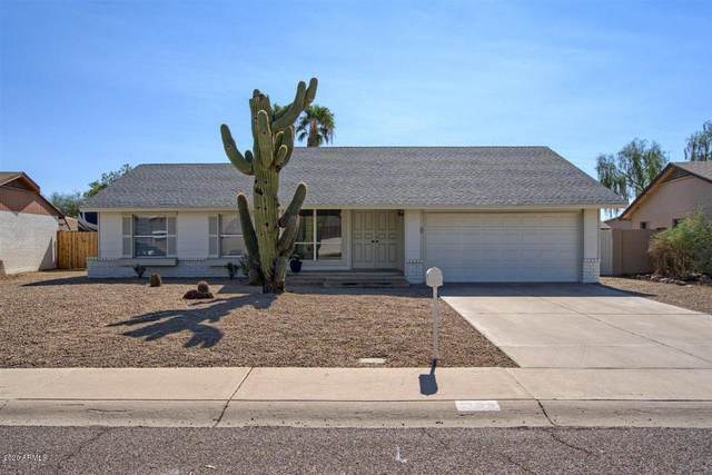 1709 W Mohawk Lane, Phoenix, AZ 85027 (MLS #6151202) :: The Laughton Team