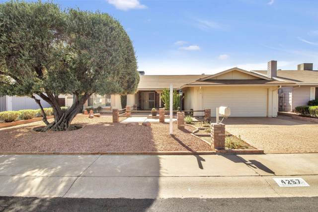 4257 E Hano Street, Phoenix, AZ 85044 (MLS #6151246) :: The Riddle Group