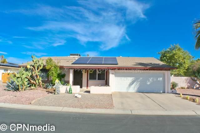 4411 W Cathy Circle, Glendale, AZ 85308 (MLS #6151269) :: John Hogen | Realty ONE Group