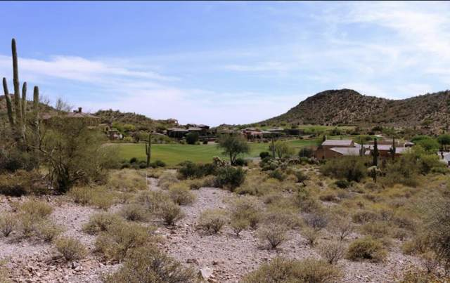9111 E Canyon Creek Drive, Gold Canyon, AZ 85118 (MLS #6152434) :: The Riddle Group