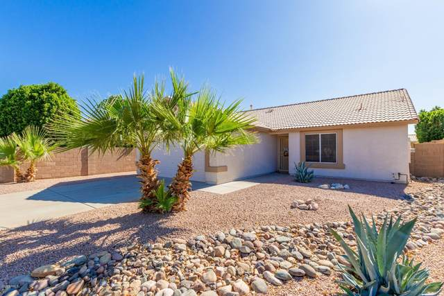 14405 W Marcus Drive, Surprise, AZ 85374 (MLS #6153369) :: Lucido Agency