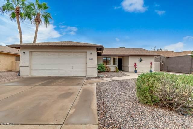 26438 S Hogan Drive, Sun Lakes, AZ 85248 (MLS #6154433) :: John Hogen | Realty ONE Group