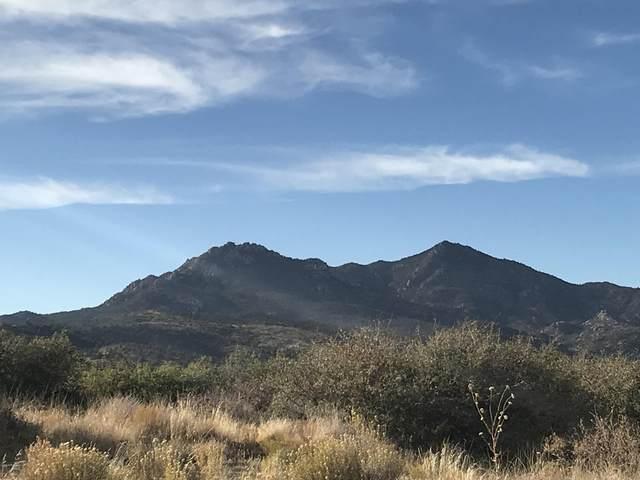 17369 S Rocky Boy Way, Peeples Valley, AZ 86332 (#6154769) :: Long Realty Company