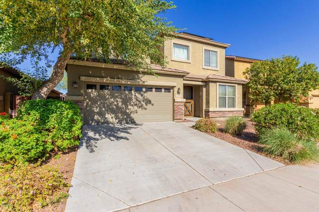 11814 W Villa Hermosa Lane, Sun City, AZ 85373 (MLS #6155182) :: BVO Luxury Group