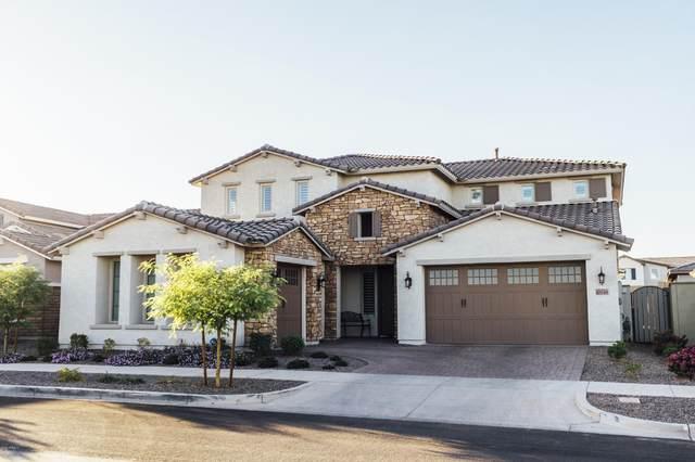 10048 E Satellite Drive, Mesa, AZ 85212 (MLS #6156253) :: Power Realty Group Model Home Center