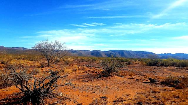 Lot 31 E Jones Boulevard, Tombstone, AZ 85638 (MLS #6156545) :: Conway Real Estate