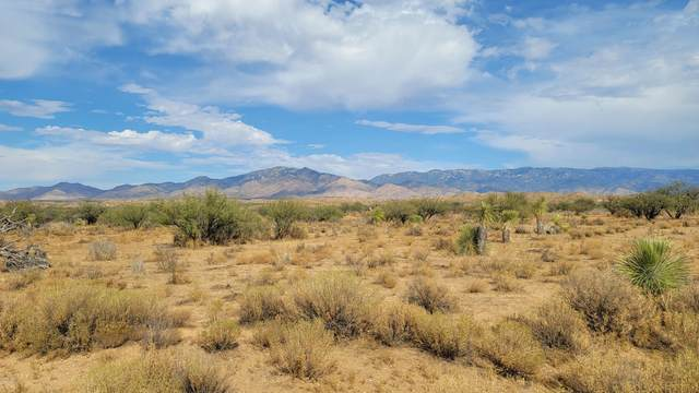40 acres Talking Wind Trail, Willcox, AZ 85643 (MLS #6156596) :: The Copa Team | The Maricopa Real Estate Company