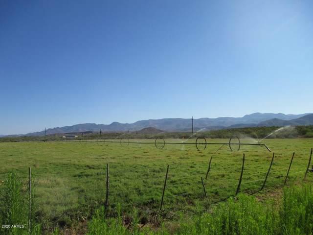 146 W Outlaw Lane, Tonto Basin, AZ 85553 (MLS #6156858) :: The Helping Hands Team