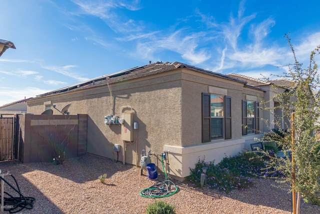 29997 W Freda Lane, Buckeye, AZ 85396 (MLS #6157594) :: John Hogen | Realty ONE Group