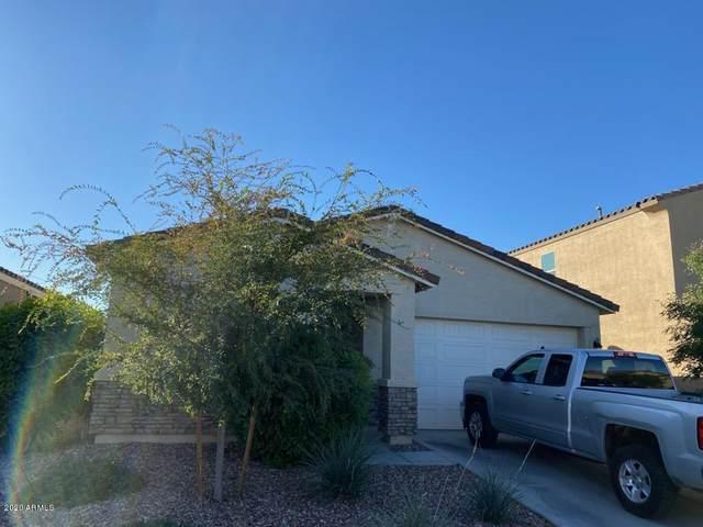 347 W Salali Trail, San Tan Valley, AZ 85140 (MLS #6157804) :: CANAM Realty Group