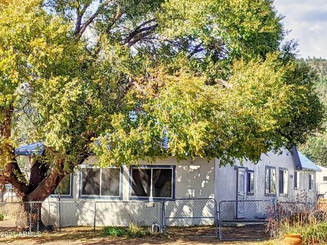 42645 Us-Hwy 180, Alpine, AZ 85920 (MLS #6158896) :: Midland Real Estate Alliance