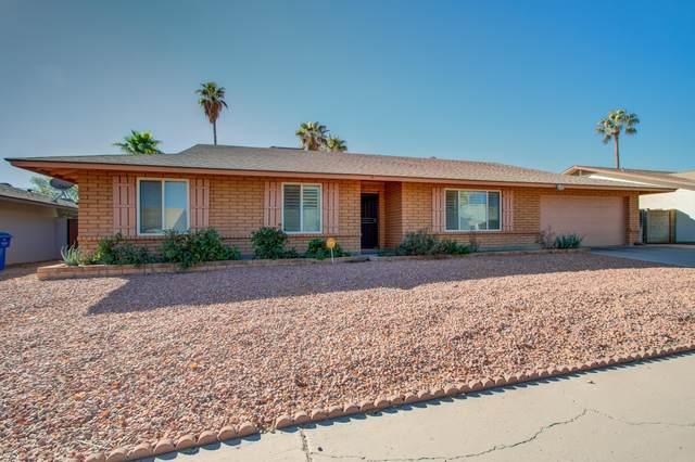 115 E Angela Drive, Phoenix, AZ 85022 (MLS #6158991) :: Yost Realty Group at RE/MAX Casa Grande