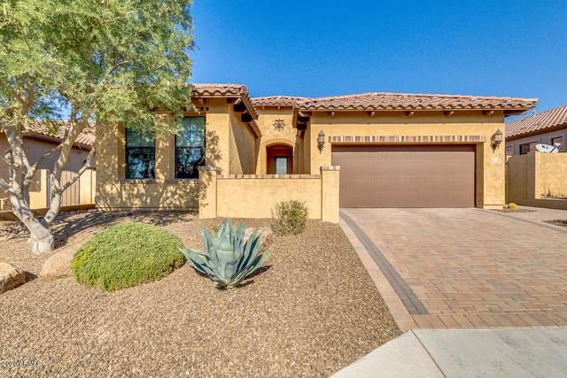 8528 E Kael Street, Mesa, AZ 85207 (MLS #6159213) :: Power Realty Group Model Home Center