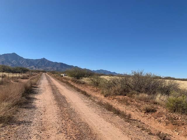 TBD N Sunshine Lane, Hereford, AZ 85615 (MLS #6159283) :: Brett Tanner Home Selling Team