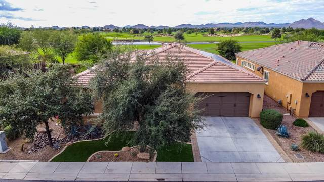 1463 E Sweet Citrus Drive, Queen Creek, AZ 85140 (MLS #6159528) :: The Riddle Group