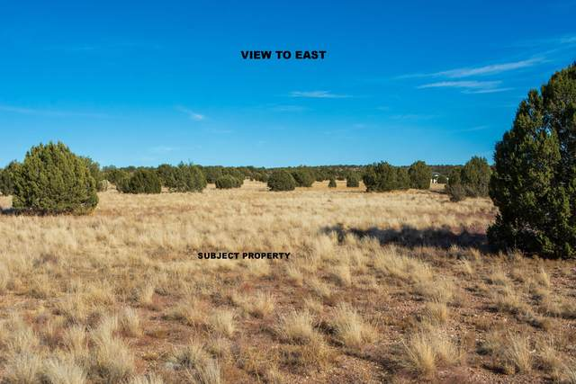 1120 E Cougar Ridge Road, Paulden, AZ 86334 (MLS #6159894) :: The Riddle Group
