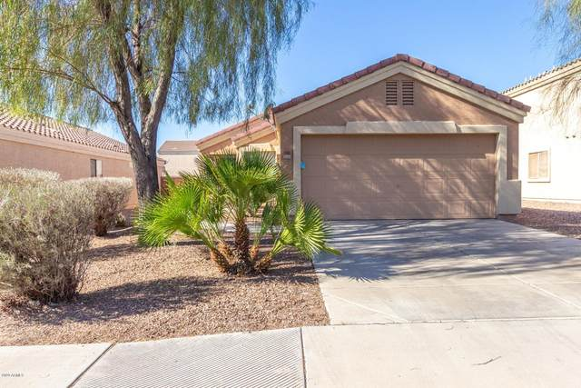 1082 S 238TH Drive, Buckeye, AZ 85326 (MLS #6160275) :: My Home Group