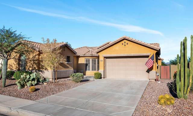38818 N Red Tail Lane, Anthem, AZ 85086 (MLS #6160439) :: CANAM Realty Group