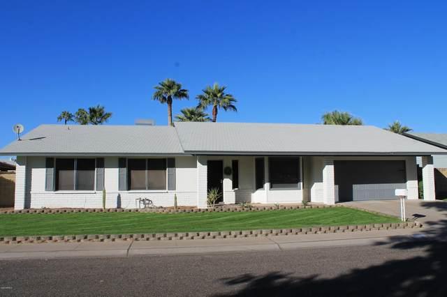 308 E Helena Drive, Phoenix, AZ 85022 (MLS #6160550) :: John Hogen | Realty ONE Group