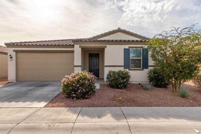 1811 E Grove Street, Phoenix, AZ 85040 (MLS #6160814) :: Brett Tanner Home Selling Team