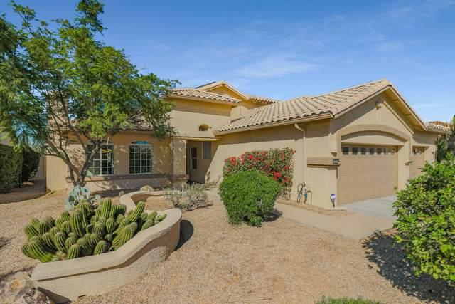 3070 N 159TH Drive, Goodyear, AZ 85395 (MLS #6161567) :: Brett Tanner Home Selling Team