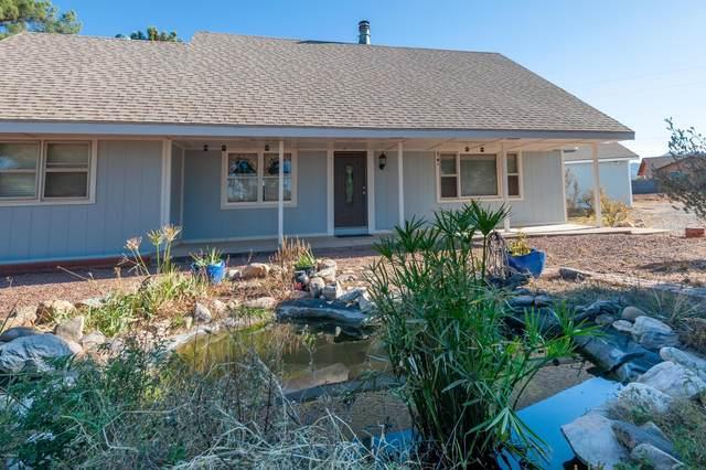 6583 S Calle De La Mango, Hereford, AZ 85615 (MLS #6161703) :: Service First Realty