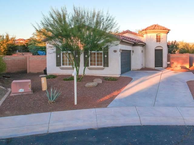 3881 N 293RD Drive, Buckeye, AZ 85396 (MLS #6162221) :: Arizona Home Group