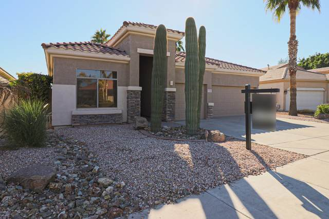 13589 W Holly Street, Goodyear, AZ 85395 (MLS #6163434) :: Long Realty West Valley