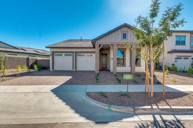 1921 W Yearling Road, Phoenix, AZ 85085 (MLS #6163477) :: Brett Tanner Home Selling Team