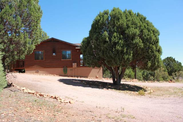 3412 High Country Drive, Heber, AZ 85928 (MLS #6163484) :: Midland Real Estate Alliance