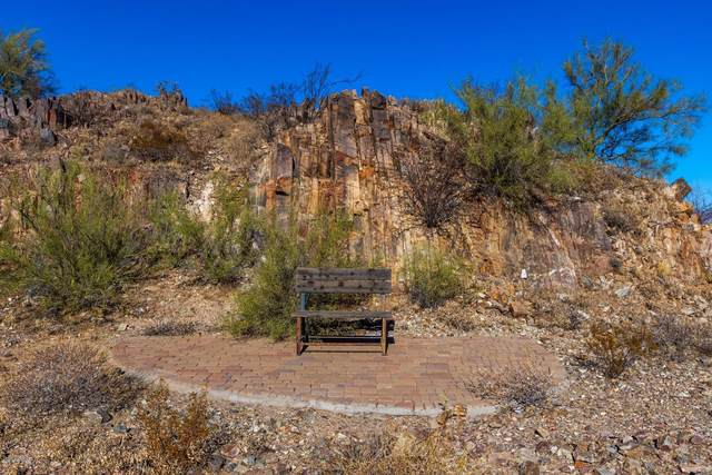 4747 E Charles Drive, Paradise Valley, AZ 85253 (MLS #6164145) :: Long Realty West Valley