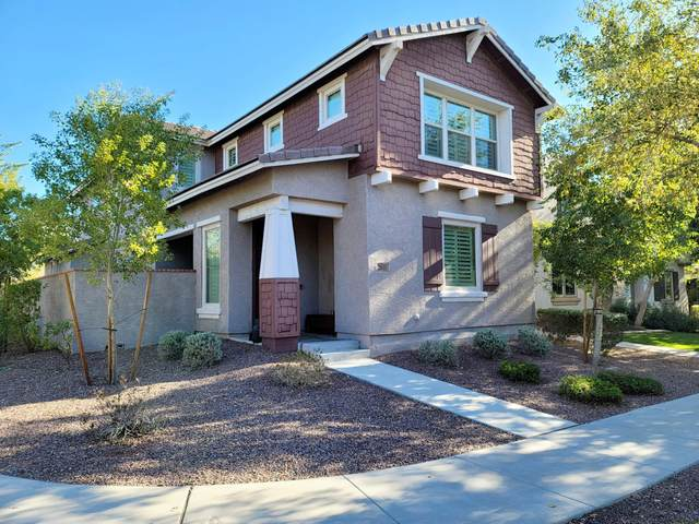 2611 N Riley Road, Buckeye, AZ 85396 (MLS #6164156) :: Power Realty Group Model Home Center