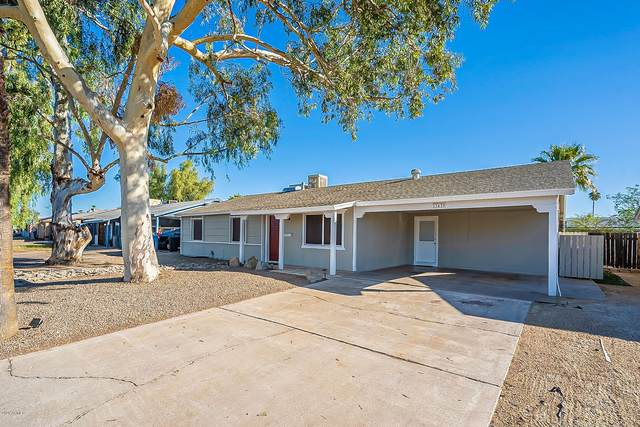 13439 N 36th Street, Phoenix, AZ 85032 (MLS #6165226) :: The Everest Team at eXp Realty