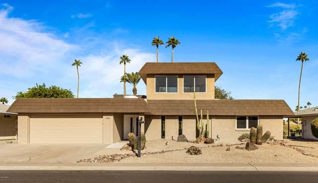 10616 W Cameo Drive, Sun City, AZ 85351 (MLS #6165465) :: The Daniel Montez Real Estate Group