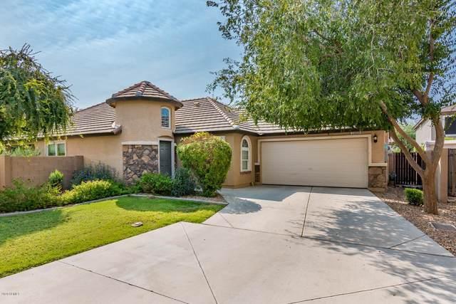 15855 N 171ST Drive, Surprise, AZ 85388 (MLS #6165758) :: Kepple Real Estate Group