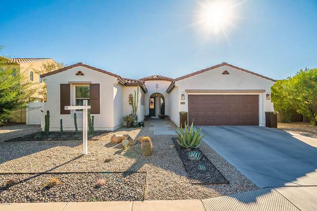 1877 W Macaw Drive, Chandler, AZ 85286 (MLS #6165987) :: Long Realty West Valley