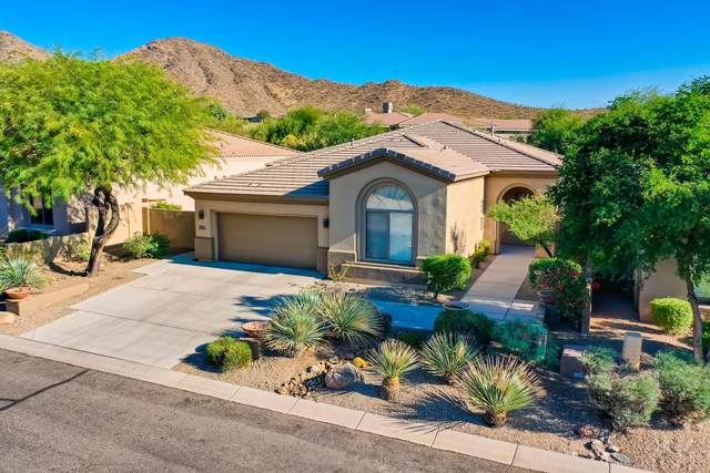 15037 N 114TH Way, Scottsdale, AZ 85255 (MLS #6166490) :: The Riddle Group