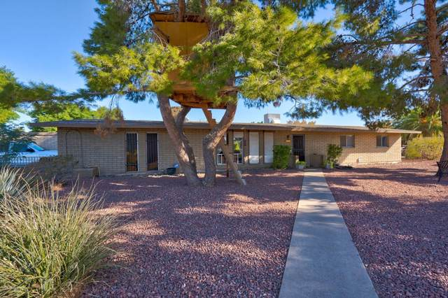 1010 E 9TH Place, Mesa, AZ 85203 (MLS #6166539) :: The Property Partners at eXp Realty