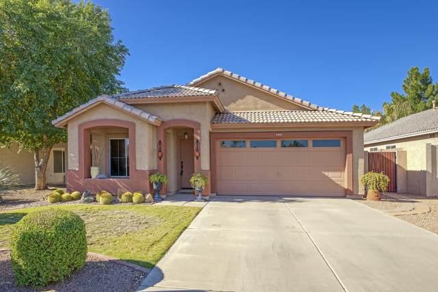 2404 S Bernard, Mesa, AZ 85209 (MLS #6167737) :: Yost Realty Group at RE/MAX Casa Grande