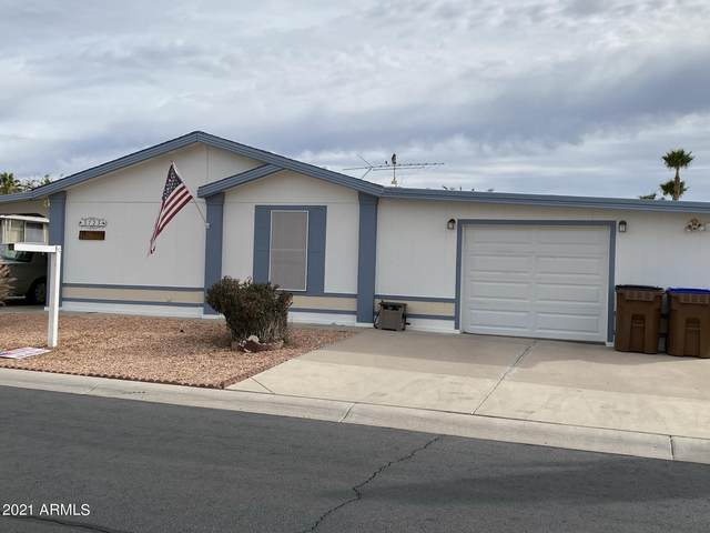 3723 N Iowa Avenue, Florence, AZ 85132 (MLS #6176150) :: Nate Martinez Team